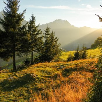 Herbstlicht in den Alpen © by paul-fotolia.com